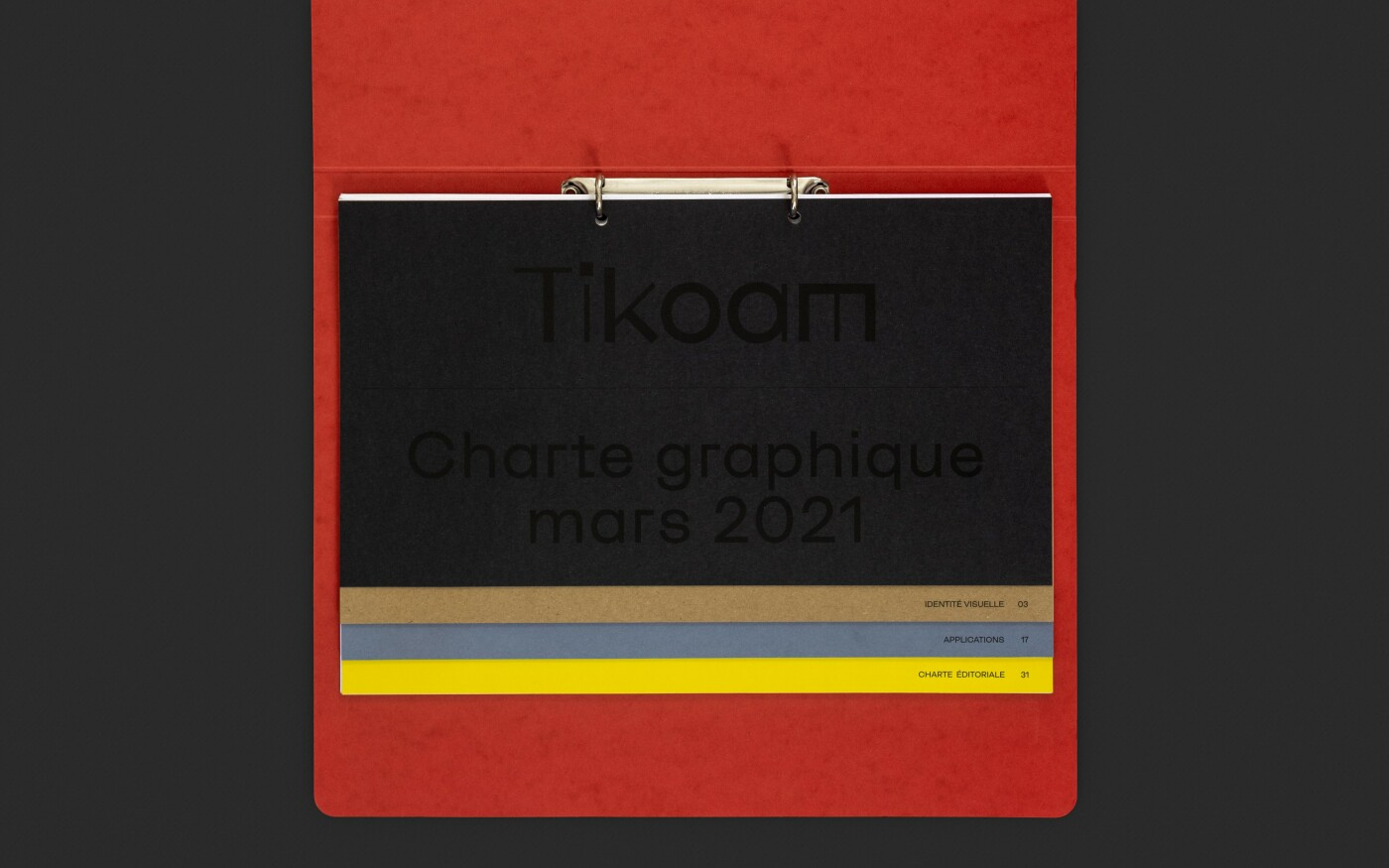 Charte graphique de Tikoam